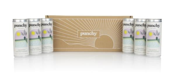 Punchy First Dip Soft Punch (6 x 250ml) Mixers